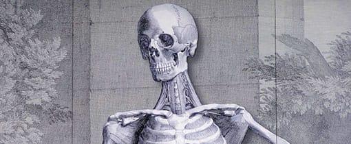 Gevel van het Anatomisch museum Leiden
