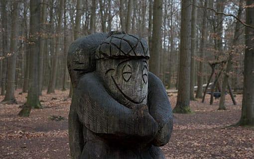 Drenthe Boomkroonpad Drouwen