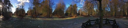 Dertiensprong op de Carolinaberg in het bos bij Dieren