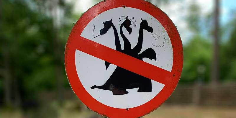 Verboden voor blowende draken? Wat mag hier nu niet? Raadsels voor de achterbank