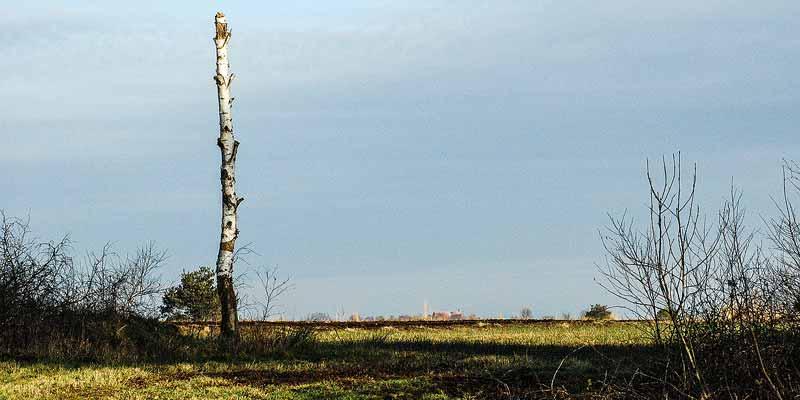 Wandelen in Drenthe - mooi in alle jaargetijden