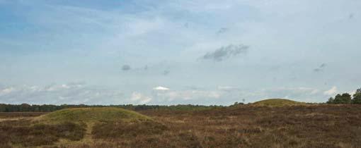 De Zeven Bergjes op de Zuiderheide bij Hilversum