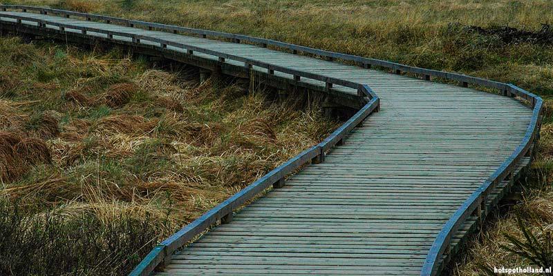Wandelen in Nationaal Park de Groote Peel