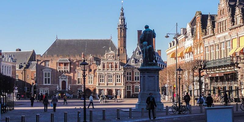 De St. Bavo in Haarlem