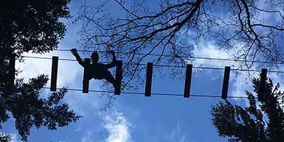 Klauteren door de boomtoppen
