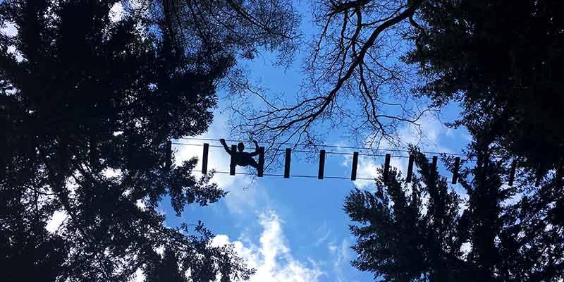 'Me Tarzan!' Avontuur in de boomtopppen van Lage Vuursche