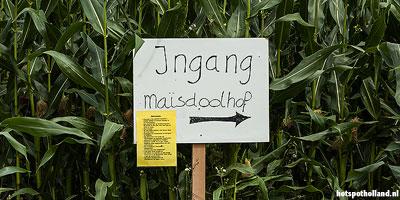 Leuke uitstapjes Maisdoolhof: Dwalen naar de uitgang