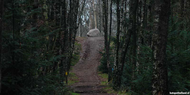 Het geografisch midden van Nederland ligt op 51 meter boven NAP, op de top van een heuvel in het bos