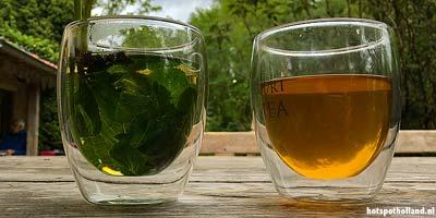 Leuke uitstapjes High tea in de Millinger Theetuin