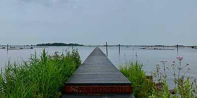 Leuke uitstapjes Pier + Horizon