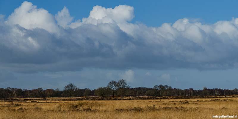 Eén van de uitgestrekte veengebieden in Drenthe. Wat voor geheimen zouden hier in de bodem zitten?