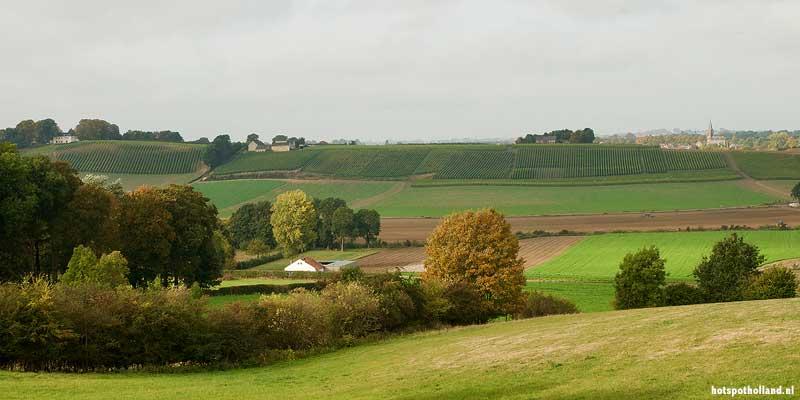 Het glooiende Zuid-Limburgse heuvellandschap rond Maastricht